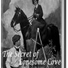 Books For All Interests: a book review of The Secret of Lonesome Cove by Samuel Hopkins Adams
