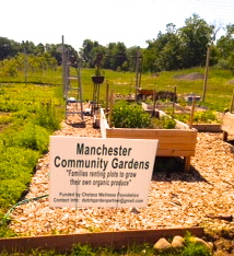 Manchester Community Garden Teaching A Lifeskill To Students The Manchester Mirror