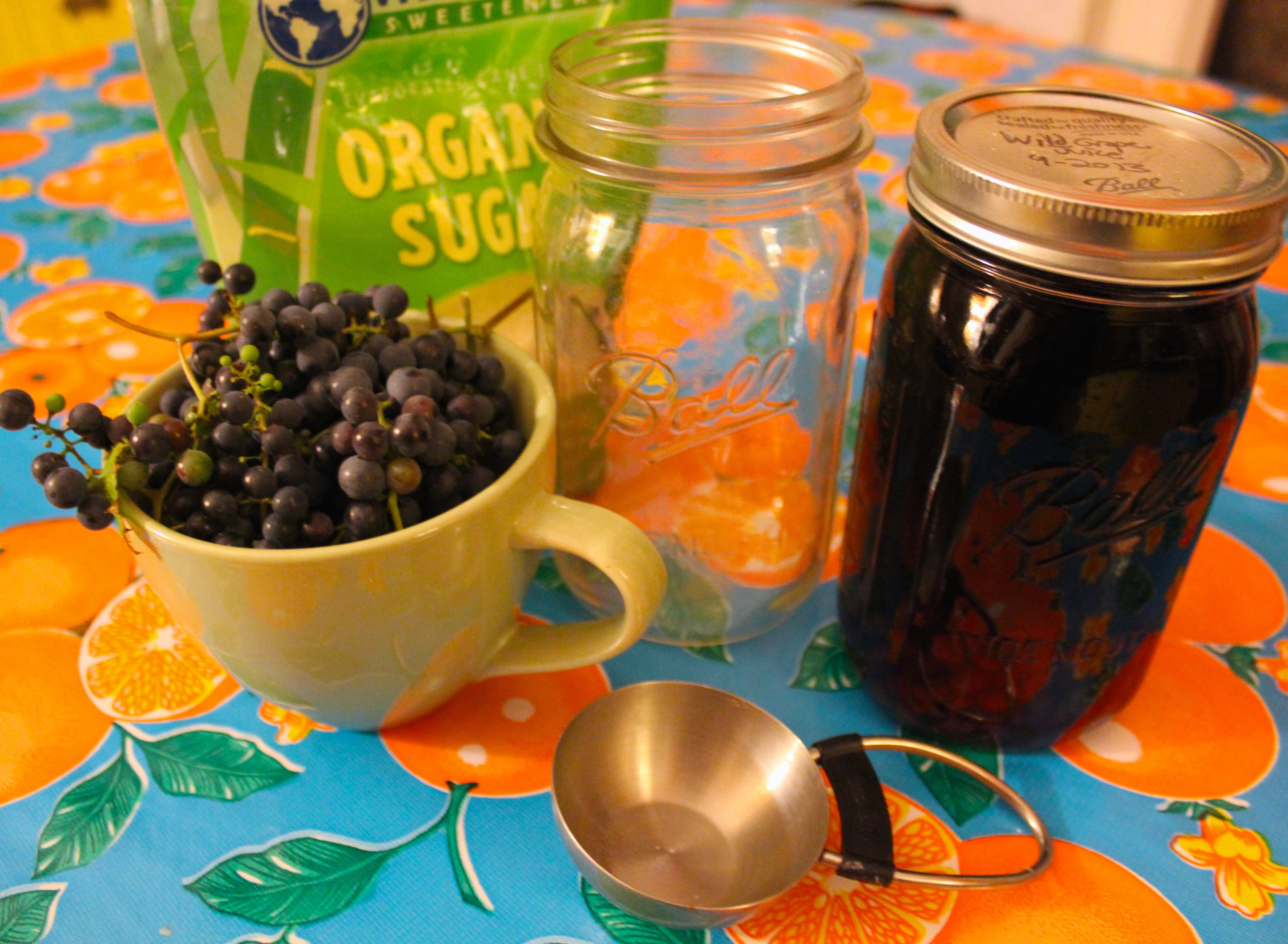 how to make grape juice from wild grapes