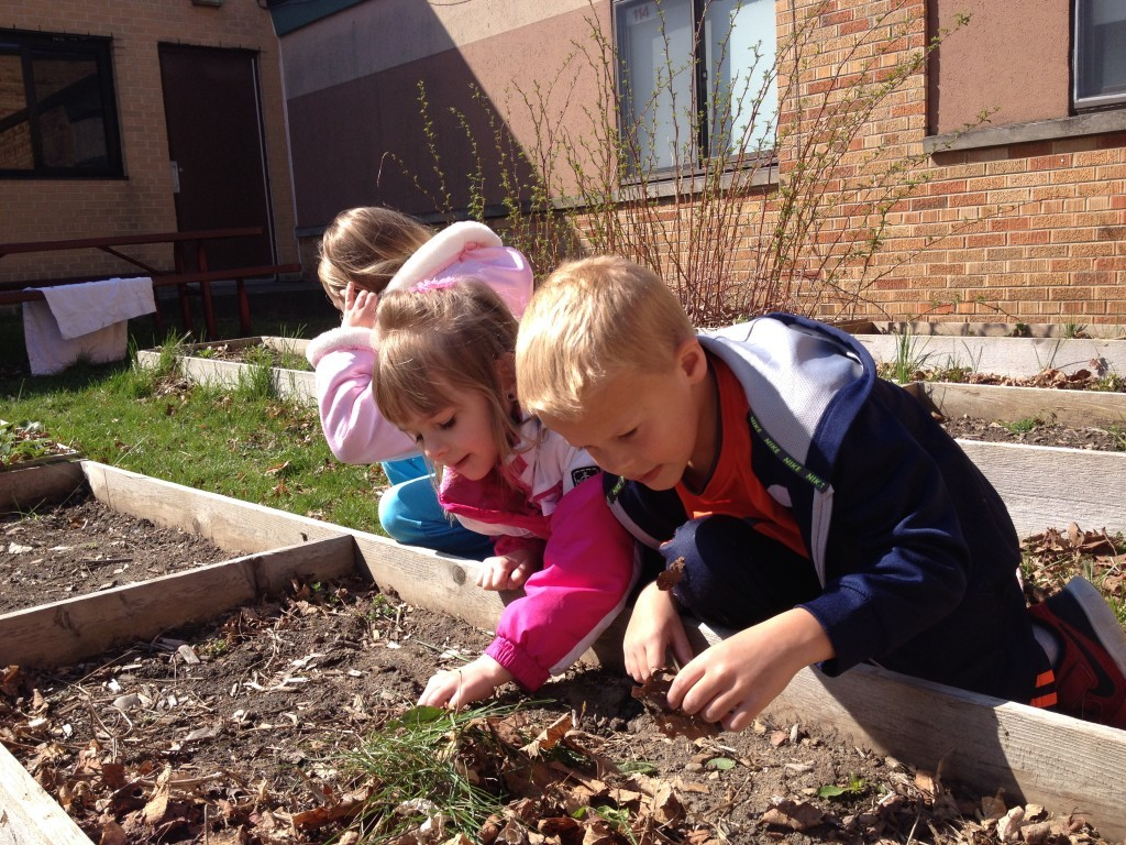 Manchester Co-op Preschool students investigating the raised garden beds outside of the Ackerson building.